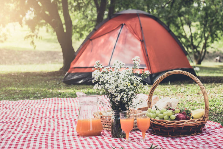 Camping Holiday Lunch Picnic Weekend Basket Container Drink Focus On Foreground Food Food And Drink Freshness Fruit Glass Grass Healthy Eating Nature No People Outdoors Picnic Plant Refreshment Table Tree Wellbeing