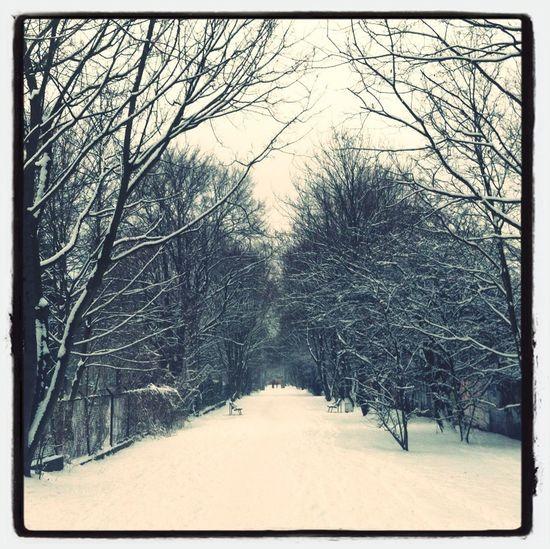 Snow, Snow Go Away