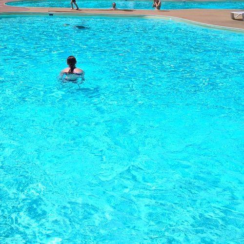 Alterner d'un bassin a l'autre si besoin. Poollife