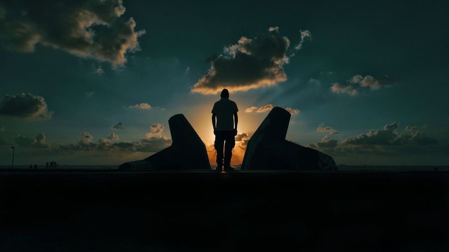 Rear view silhouette of man standing by sea against sky during sunset