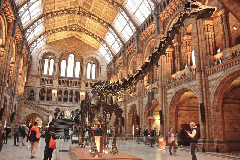 Animals Museum London LONDON❤ Museum Museum Of Natural History Museums Natural History Museum Nature_collection
