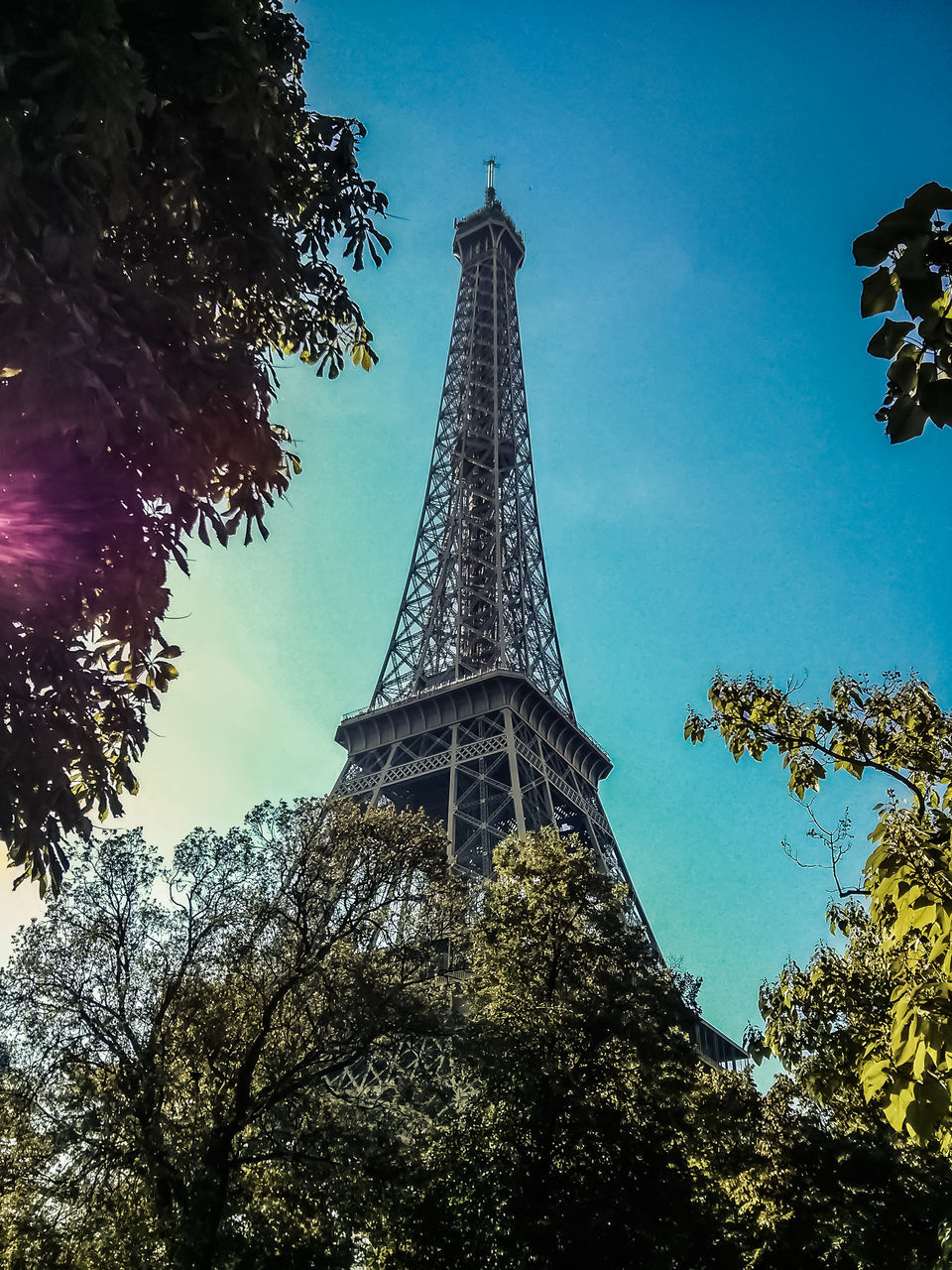 low angle view, tree, tower, architecture, built structure, tall - high, travel destinations, sky, no people, tall, metal, day, history, monument, tourism, outdoors, building exterior