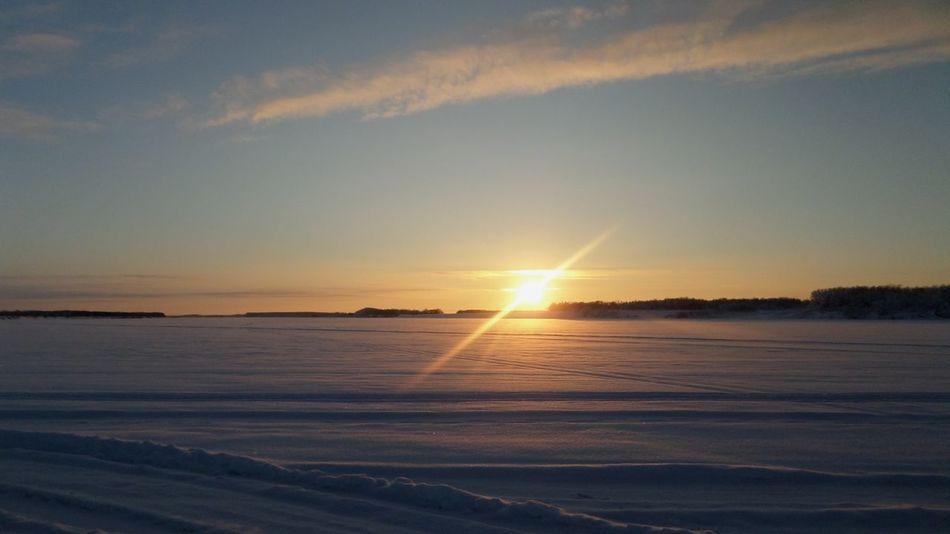 Road Russia Sunset Лес Trees Sky зима север Ломоносово Cold Days