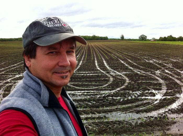 Spring corn field...