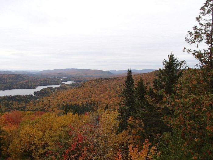 Lac Provost et Laurentides Autumn Lake Fall Colors Foliage Plant Beauty In Nature Sky Growth Tranquility Scenics - Nature Tranquil Scene Nature Landscape Outdoors