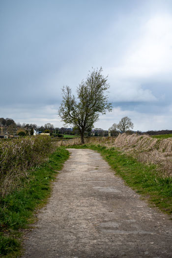 Empty road along trees on field against sky