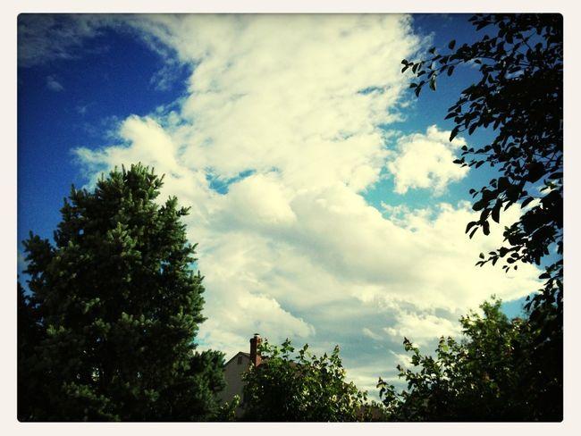 June Sky!
