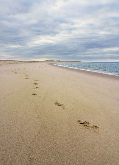 Sylt - Ellenbogen Alone Beach Cloudy Ellenbogen Empty Beach Empty Places FootPrint Footsteps Footsteps In The Sand Free Space For Text Lonely No People Outdoors Sand Sea Sylt Sylt, Germany The Way Forward Tranquility Travel Destinations Water