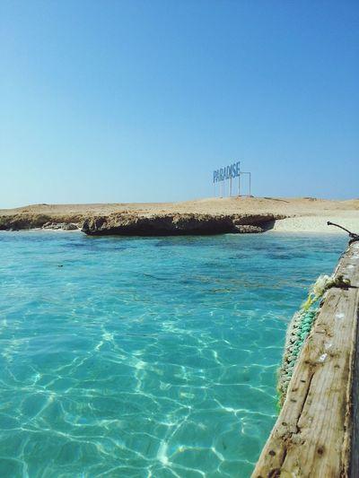 Egypt RedSea Paradise Traveling