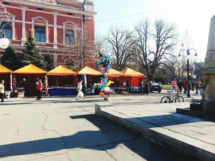 Happy Holidays! New Years Day 2015 Christmas Decorations December 2015 December Sun Zajecar,Serbia