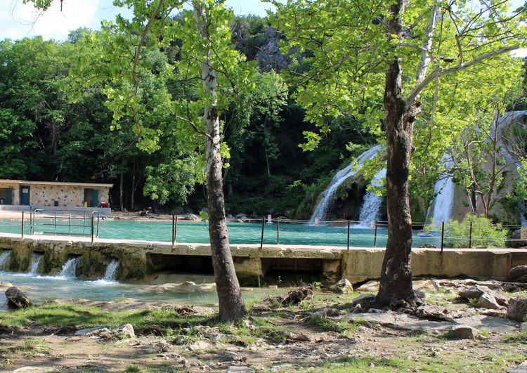 Turner Falls, Oklahoma Beauty In Nature Built Structure Day Flowing Water Green Color Growth Land Nature No People Outdoors River Scenics - Nature Tranquil Scene Tranquility Tree Water