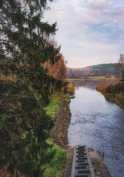 Lyna River, Poland Lyna River Warmia Rzeka Olsztyn Poland Natureshots Landscapephotography Shotzdelight Nature łyna Polska Warmia-Masuria Autumn Water Tree Pixelated Sky EyeEmNewHere