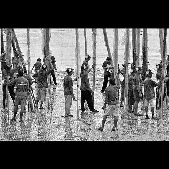 """Nyondong"", the method one of malay peoples how to catch some shrimps at the coastal area. ""Nyondong"", satu cara orang melayu pesisir untuk menangkap udang di area pesisir pantai. Dailylife Wonderfulkepri  Explorekepri Indonesia_photography Geonusantara Kompasnusantara Pewartafotoindonesia Natgeonesia 1000kata Wonderfulindonesia Serikat_fi IndonesiaOnly Photooftheday Thephotosociety Blackandwhitephoto Bw_indonesia Artphoto_bw Bnw_globe Bnw_worldwide Bestshooter_bw Hipaae Hipasnap"