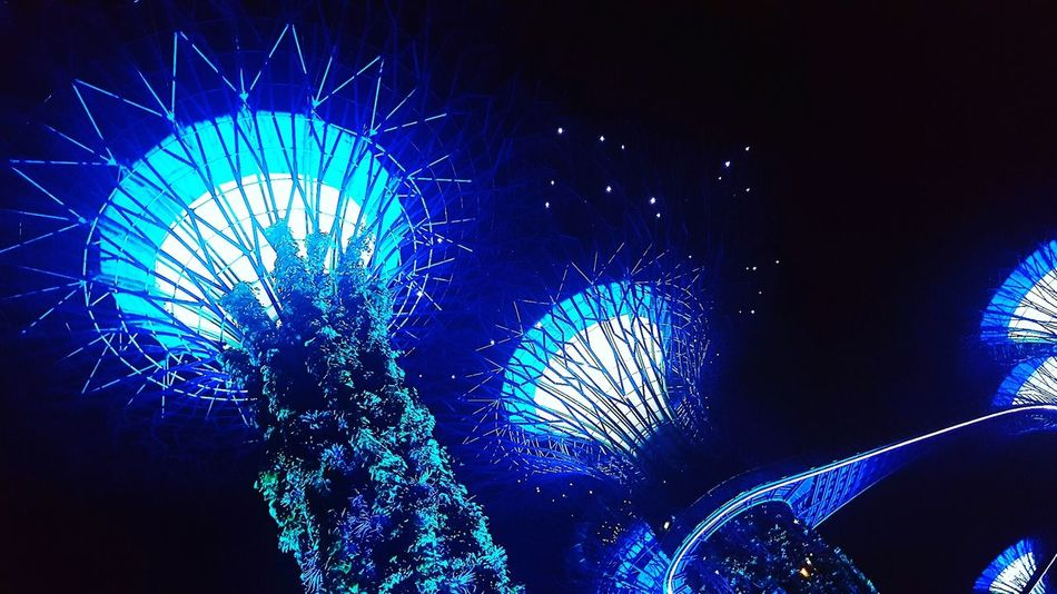 Gardens By The Bay Singapore Colors Lights