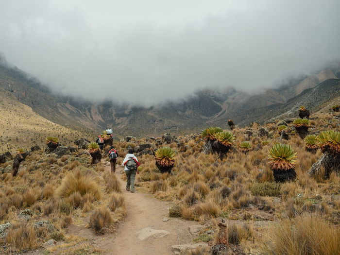 Rear View Of People Hiking On Field Against Cloudy Sky