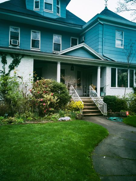 House Set RahimNoel Rahim New York NY NYC Vivid First Eyeem Photo No People Beauty In Nature Yellow Blue Love Beautiful Flower ❤ Calm House