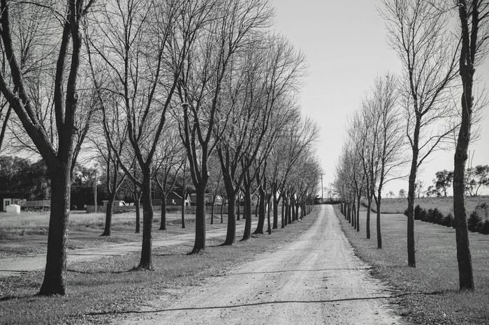 Photo essay - A day in the life. Southeast Nebraska October 22, 2016 A Day In The Life America B&w Street Photography Bare Trees Camera Work Country Road Eye For Photography EyeEm Best Shots - Black + White EyeEm Gallery Eyemphotography Fujifilm_xseries Nebraska No People Outdoors Pathway Photo Diary Photo Essay Rural America Seasons Small Town Stories Storytelling The Way Forward Tree Lined Visual Journal Weekend Activities