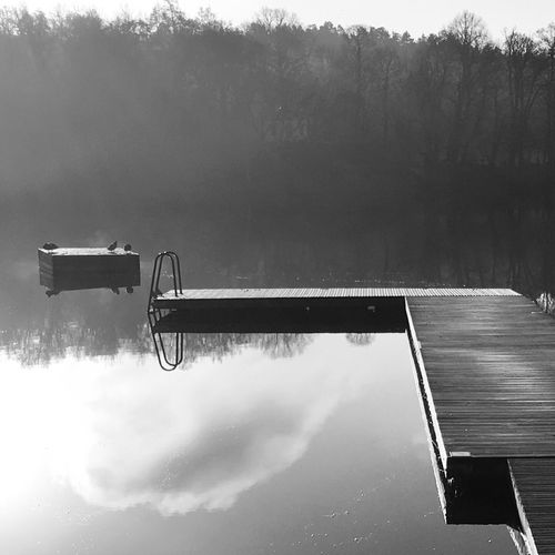 Foggy days in November Calmwater Bw_nature Foggy Day Misty Morning Showcase: November