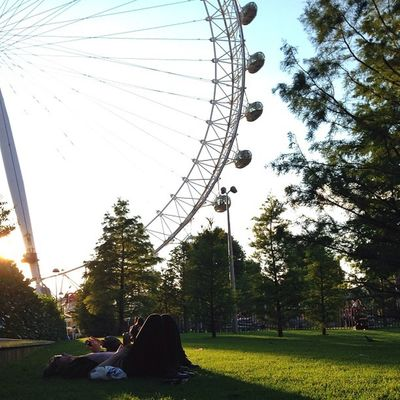 Relax under The #Eye of London ☀️?????☀️#alan_in_london #gf_uk #gang_family #igers_london #insta_london #london_only #thisislondon #from_city #ic_cities_london #ig_england #love_london #gi_uk #ig_london #londonpop #allshots_ #aauk #mashpics #pro_shooter Gi_uk Igers_london Ig_england Love_london Ic_cities_london Eye Ig_london London Eye Aauk LondonEye Capture_today Gang_family Loveyoursummer Londonpop Mashpics Allshots_ Top_masters London_only From_city Gf_uk Pro_shooters Alan_in_london Insta_london Thisislondon
