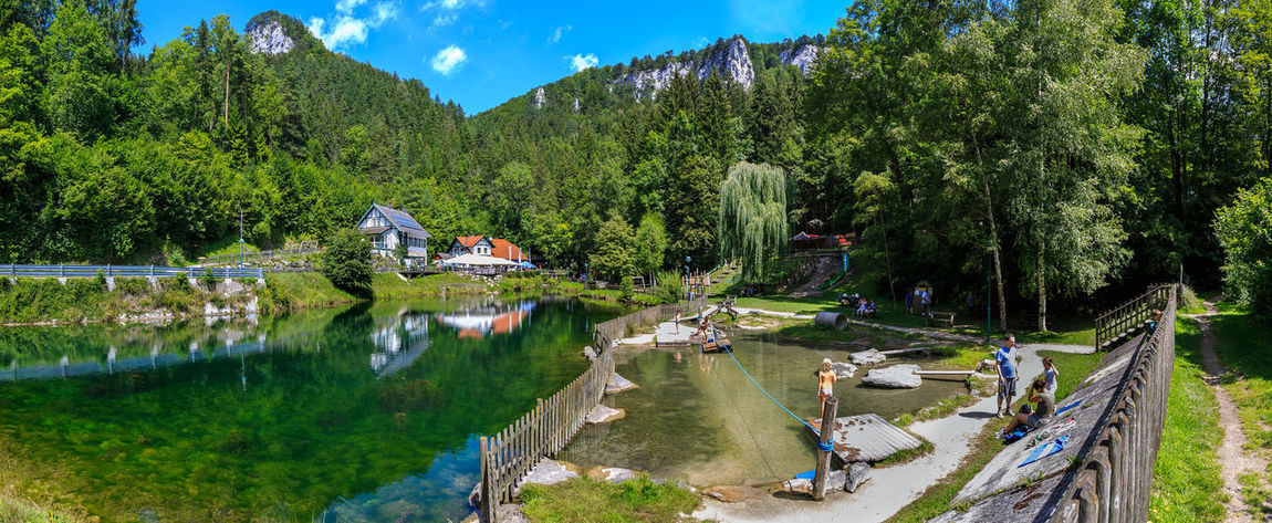 Myrafälle @ Austria 🇦🇹 Beauty In Nature Day Growth Lake Mammal Men Mountain Myrafällle Nature Outdoors People Real People Scenics Sky Tranquil Scene Tranquility Tree Water