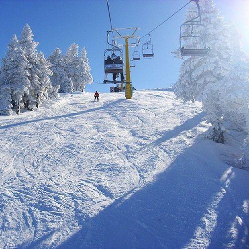 Kar Snowboard Snow Uludag Uludag Kayak Winter Bursa Türkiye Turkey Sled Karkay