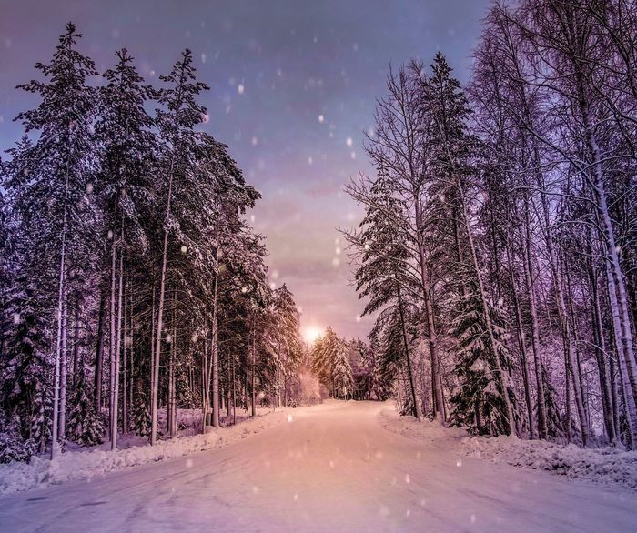 Thaw is coming Dublin Mountains Wicklow Ireland Inspire2 Dji Snow Dublin Tranquil Scene No People Weather Scenics The Way Forward Sky Outdoors Landscape Night Road Bare Tree Illuminated
