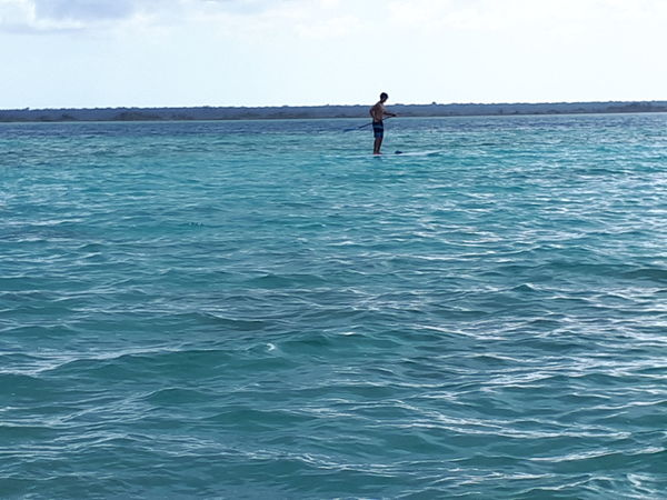 solitario Sea Standing Vacations Adventure Outdoors Leisure Activity Sport Nature Real People Day Oar One Man Only