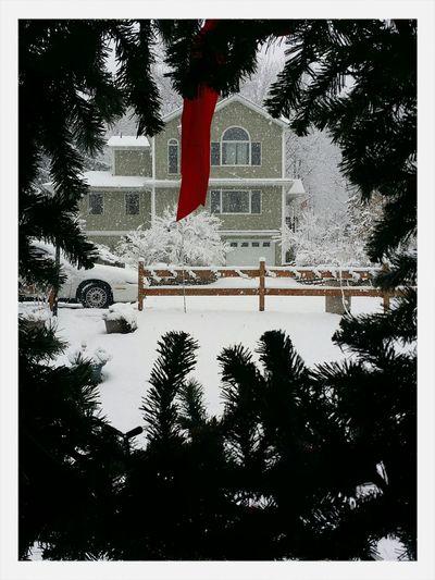 Taken on Thanksgiving vacation in Monroe, NY. Newyorktrip Snow ❄ Enjoying Life First Eyeem Photo