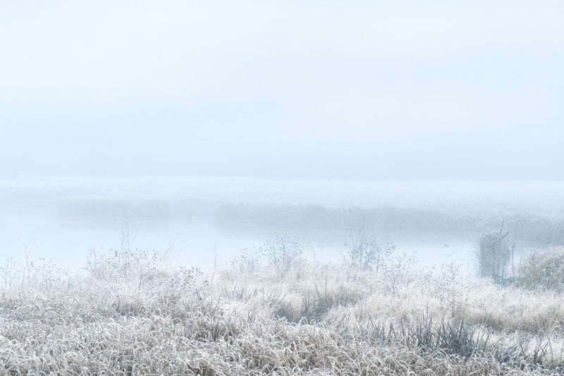 Scenic view of foggy landscape against sky during winter