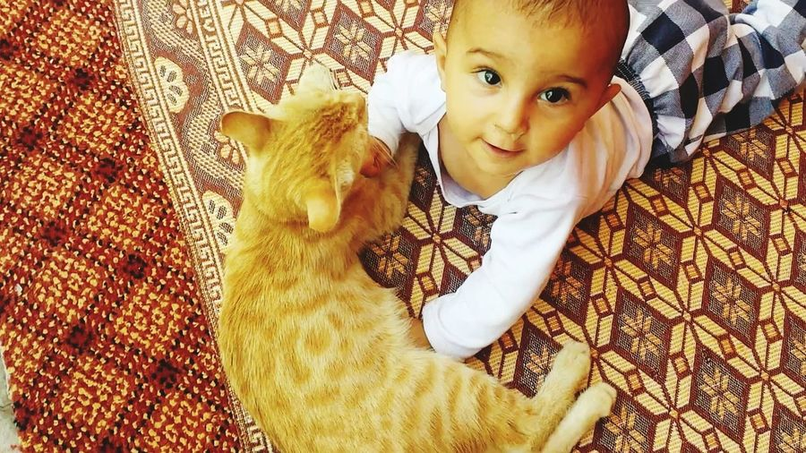 High Angle View Of Baby Boy Lying With Cat On Mat