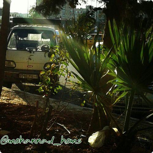 أشعة شمس الحرية حمص_المحاصرة ! .. هنا_حمص