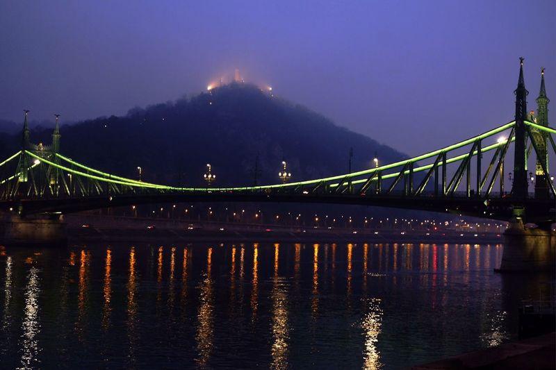Liberty Bridge Over Danube River At Night