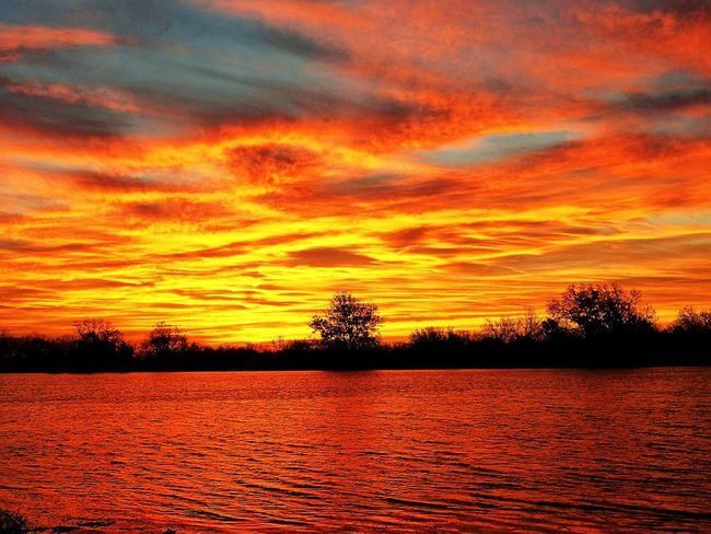 winter sunset Best EyeEm Shot Nature Clouds And Sky EyeEm Best Shots Eye4photography  Orange Color Sunset Beauty In Nature Nature Scenics Tree Tranquility Dramatic Sky Tranquil Scene Outdoors Cloud - Sky Sky