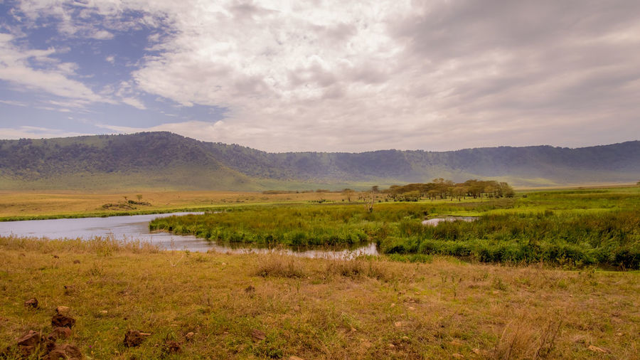 Landscape view of the lake within Ngorongoro crater. HDR Nature Nature Photography Ngorongoro Crater River View Riverside Tanzania Africa Beauty In Nature Cloud - Sky Environment Lake Lake View Landscape Landscape_photography Mountain Nature Non-urban Scene Outdoors River Scenics - Nature Swamp Tranquil Scene Tranquility Water