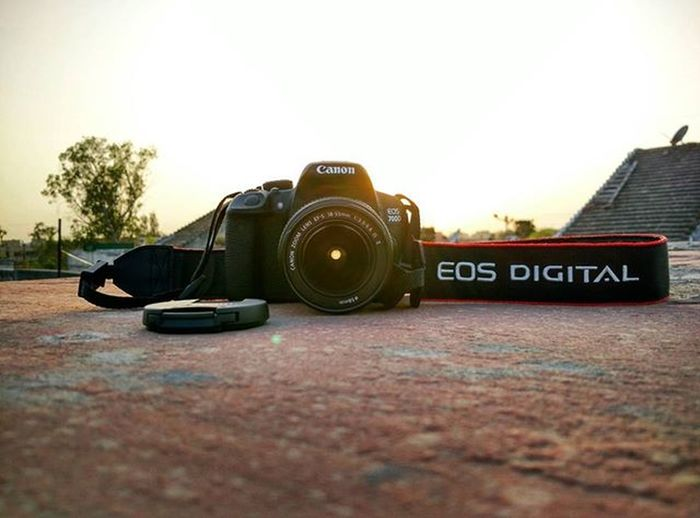 Canon EOS 700D Photography Instagram Instagood Instalike Instapic Doubletap India Sun Sunlight Canon 700D Canon700D Eosdigital Mi4 Mi4photography Xiaomimi4 Mycanon Mymi Hdrpro HDR Sunshine Evening Daylight Instaphoto Instaphotography photogram random