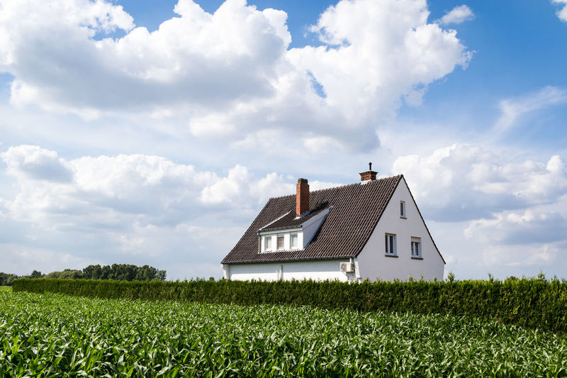 Flanders Agriculture Architecture Beauty In Nature Building Building Exterior Built Structure Cloud - Sky Corn Corn Field Day Field Fluffy Clouds Grass Green Color Growth House Land Landscape Nature No People Outdoors Plant Rural Scene Sky
