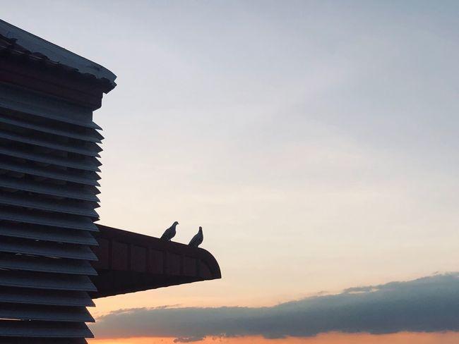 Sky Architecture Built Structure Nature Building Exterior Silhouette Sunset