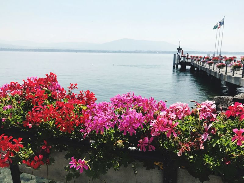 Coppet Suisse  @phaffner Have a nice day