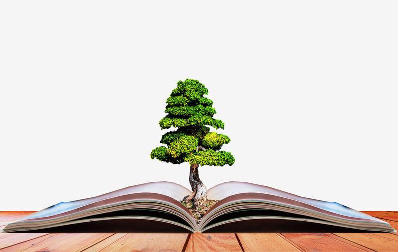 Ideas, books,