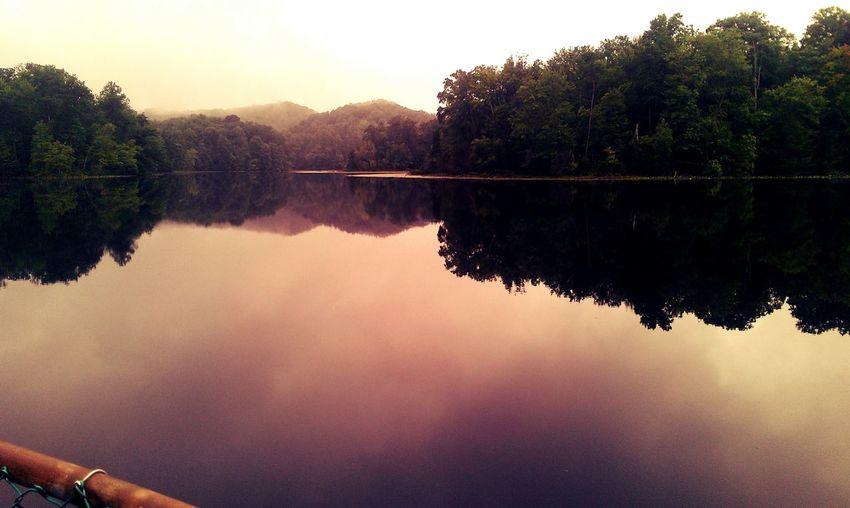 USA Tn Nature Baysmountain Lake EyeEmNewHere