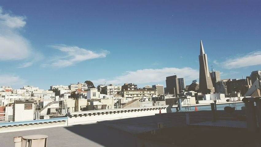 TransAmericaBuilding SF First Eyeem Photo Eeyem Photography Rooftop View
