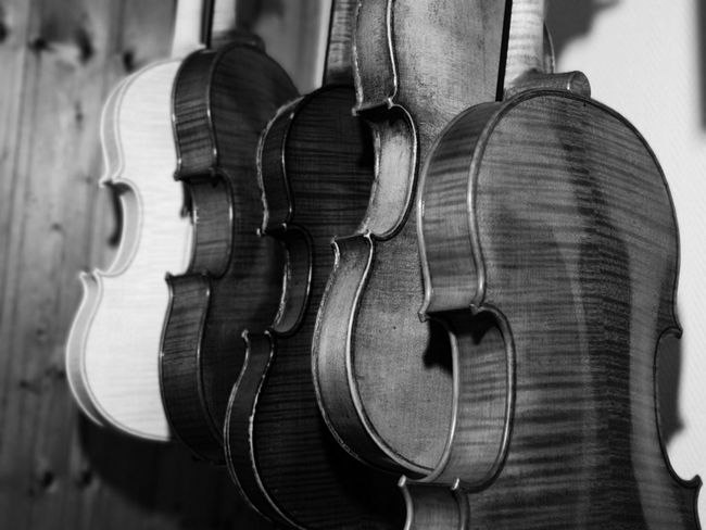 50+ Violin Pictures HD | Download Authentic Images on EyeEm