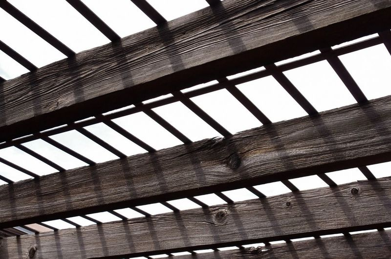 0020 Architecture Built Structure Pattern No People Day Window Indoors  Sky Low Angle View Building Full Frame Fence Boundary Barrier