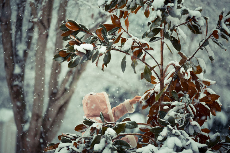 Shades Of Winter Beauty In Nature Close-up Cold Temperature Day Nature One Person Outdoors People Snow Snowing Tree Weather Winter