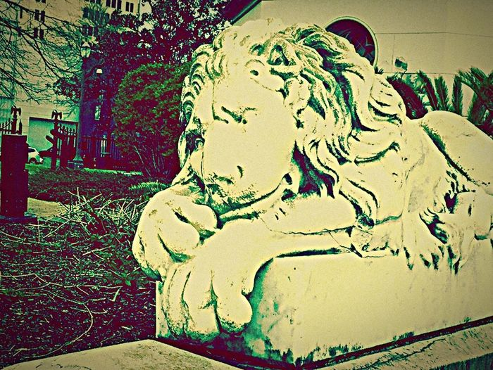 Art And Craft Sculpture Statue Tree Close-up No People Day Outdoors Lion Statue, Stone Lion, Lion Statue Old State Capital In Baton Rouge Old State Capitol BatonRouge