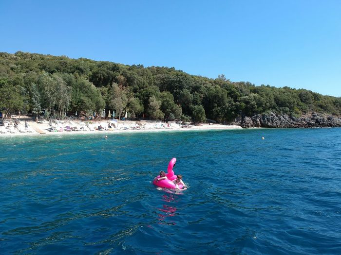 Friends swimming with pink inflatable ring in sea during sunny day