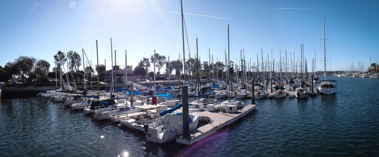 Boat City Life