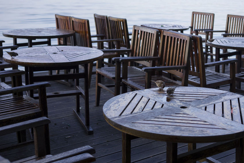 Absence Arrangement Cafe Chair Day Empty Furniture Group Of Objects Nature No People Outdoor Cafe Outdoors Place Setting Restaurant Sea Seat Sidewalk Cafe Summer Table Water Wood - Material Wood Paneling