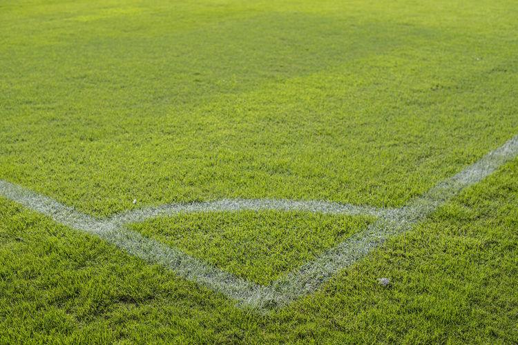 Full frame shot of green field