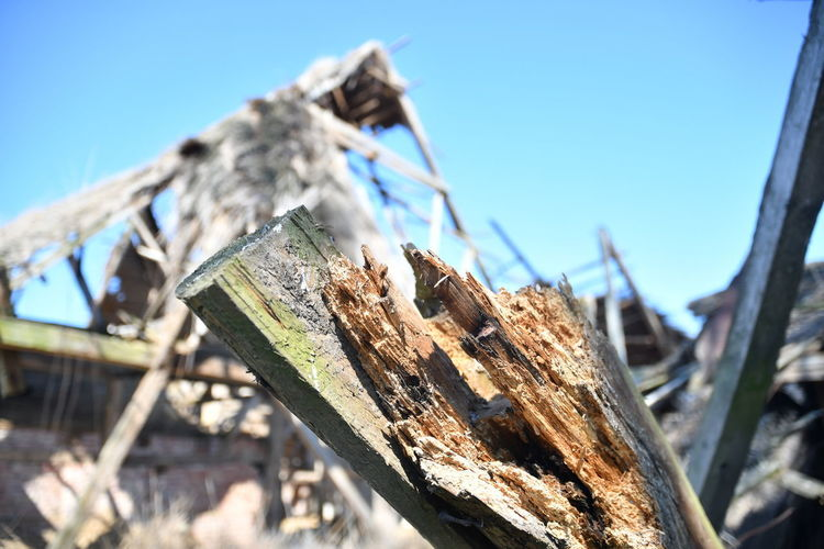 Alte Scheune Wood - Material Sky Day Focus On Foreground Nature No People Close-up Sunlight Clear Sky Damaged Outdoors Fence Blue Selective Focus Barrier Tree Boundary Wood Low Angle View Textured  Bark Ruins Scheune Verfallen